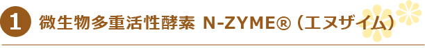 微生物多重活性酵素 N-ZYME®(エヌザイム)