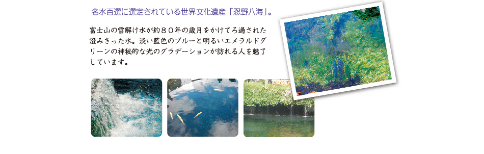 天然水 忍野八海