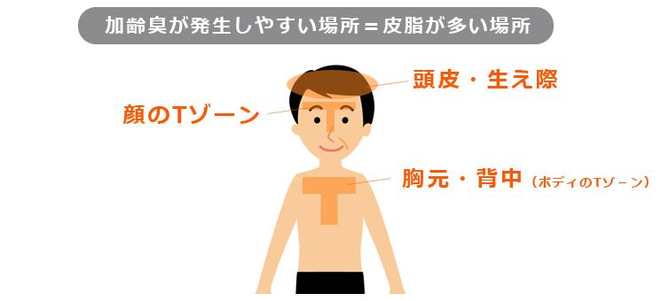加齢臭が発生しやすい場所=皮脂が多い場所