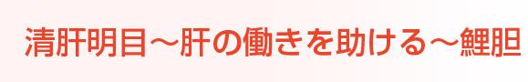 清肝明目〜肝の働きを助ける〜鯉胆