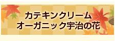 カテキンクリーム オーガニック宇治の花(180g)